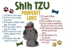 Shih Tzu Property Laws