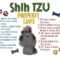 Shih Tzu Property Laws