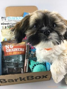 Shih Tzu Goodies